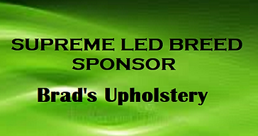 BradsUp S.png