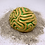 Thumbnail: Diploria labyrinthiformis