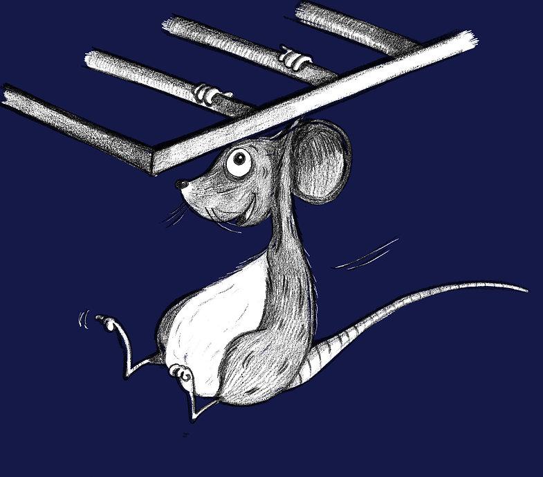 rack swing.jpg