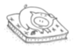 Pig_4.jpg