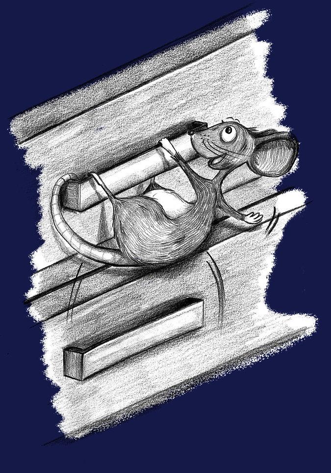 climbing drawers.jpg
