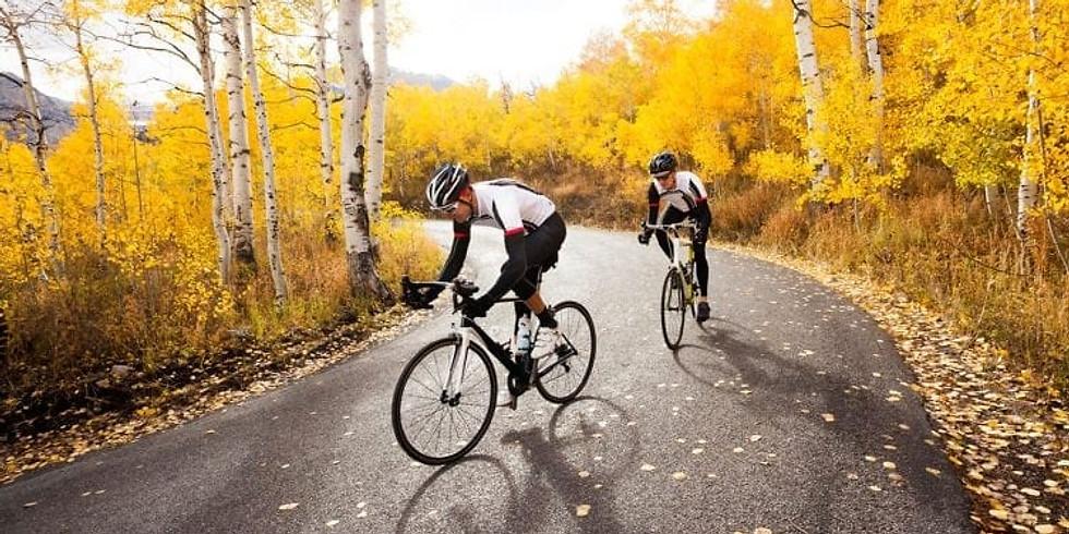 Rennrad Technik Training / Cycling Technique