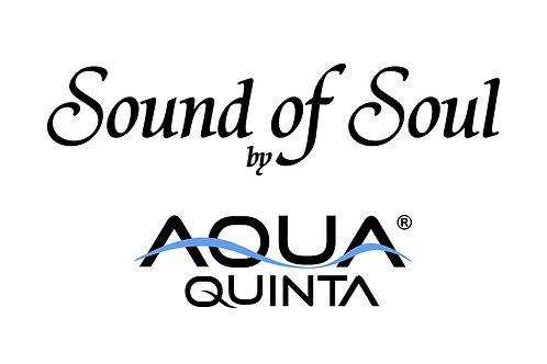 Sound of Soul (Device)