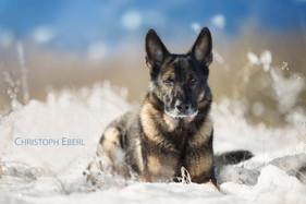 Christoph_Liegen im Schnee.jpg