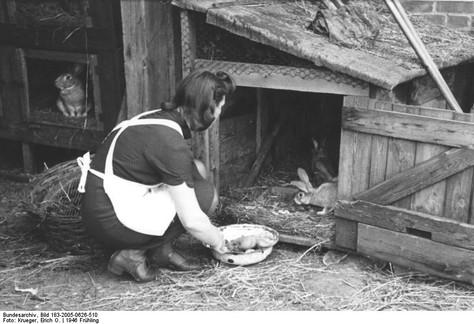 Beaucoup de participantes ont grandi à la ferme. Quand elles ne savaient pas quoi faire, leurs parents leur demandaient d'aller chercher de l'herbe pour les lapins. Quel crève-coeur quand l'un d'eux était tué !