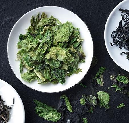Les algues aux supers pouvoirs 🌿