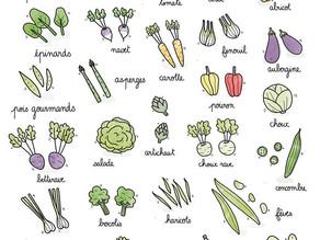 Légumes & fruits de juin 🍓