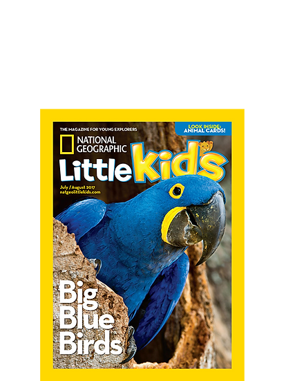National Geographic Little Kids(PAC)