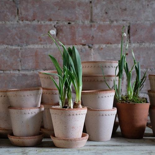 Natural Italian Herb & Plant Pots