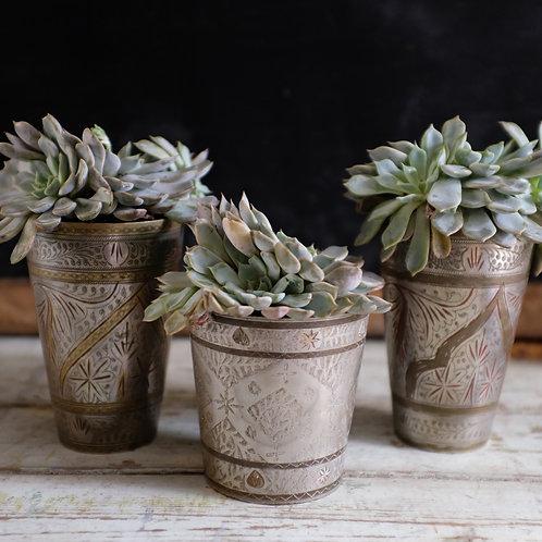 Vintage Lassi Cup with Succulent Plant