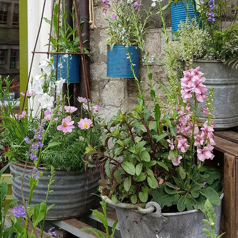 Planted vintageware...