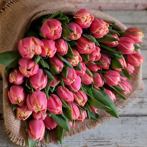 Columbus Double Tulip Bunch