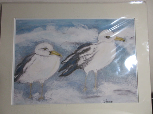 Limited edition print - Seagull & friend