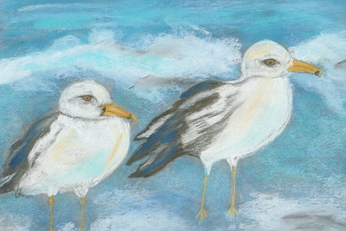 (49) Seagull and friends - Greetingcard