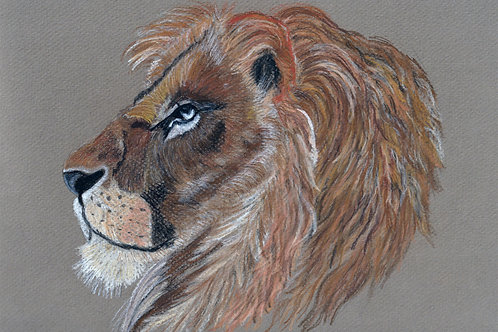 limited edition print - the Lion of Judah