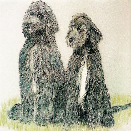 (2) Just the two of us - Labradoodles Greeting card