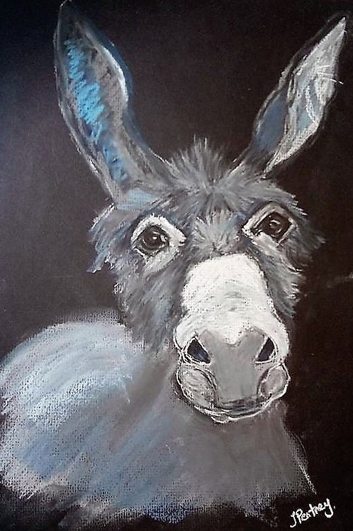 (55) Cedrick the Donkey - Greeting card