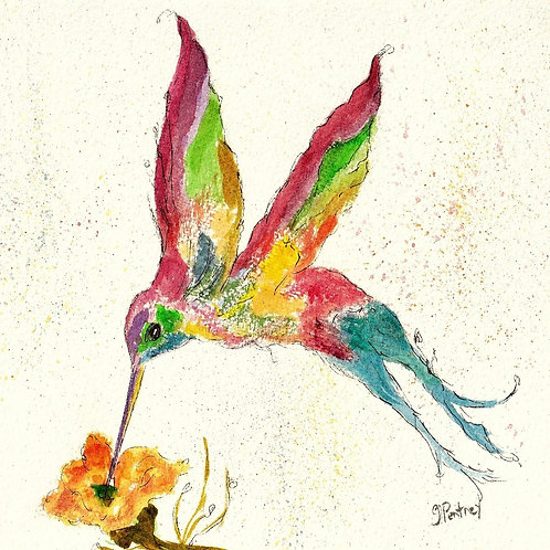 (10) In Flight - Hummingbird Greeting card