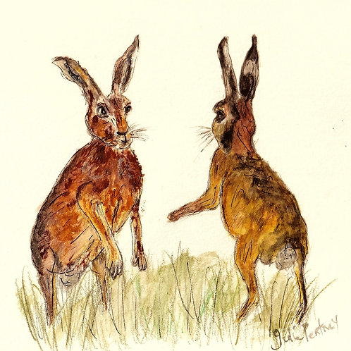 (19) Best Friends - Boxing hares greeting cards