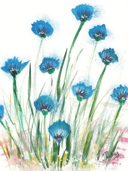 (26) Cornflowers Greeting card
