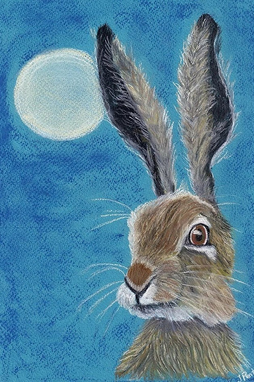 (54) Chester -Hare Greeting card