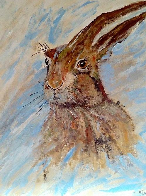 (8) Mr Hare - Greetingcard