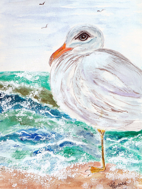(29) Seagull in the sea - Greeting card