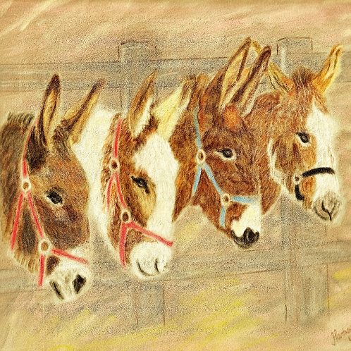 (4) Donkey's - Friends for Life Greeting card
