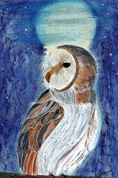 (53) Hootie the Owl - Greeting card