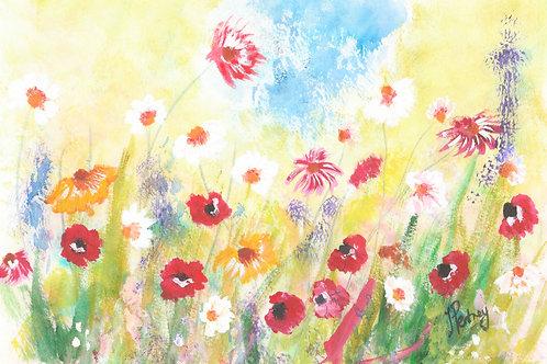 (27) Poppies & Daisies