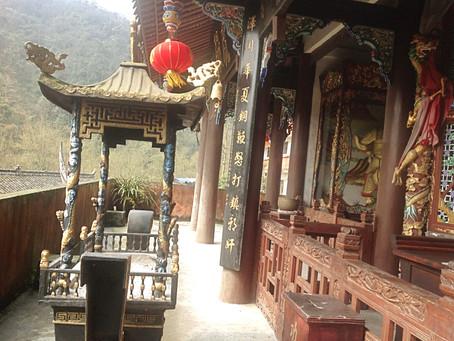 Qi Gong Teacher's Training Retreat