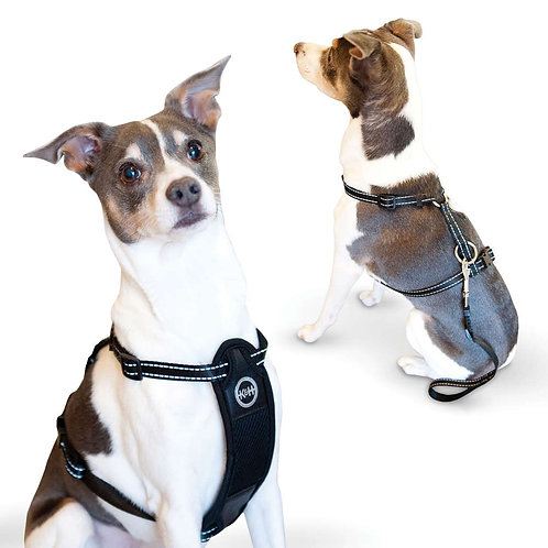 Travel Safety Harness  by K&H    Black   small