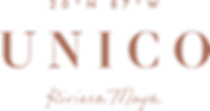 UNICO Logo - DigitalROSEGOLD.png