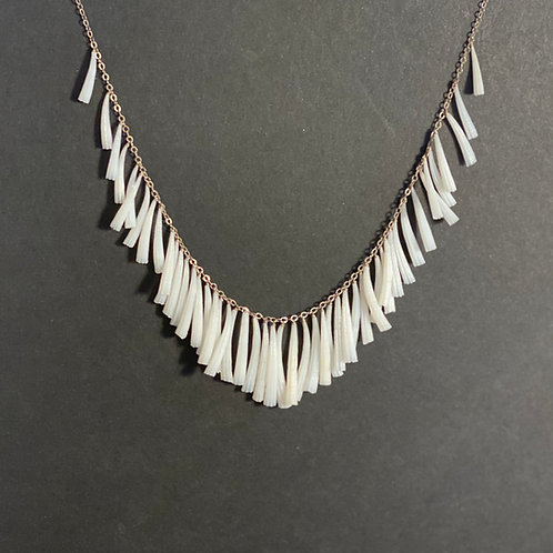 Tusk Shell Necklace