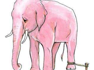 Elefante Acorrentado