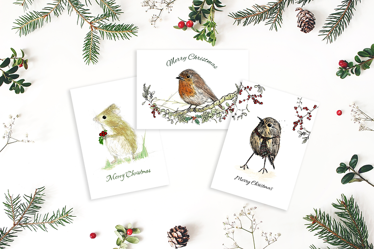 Christmas card multipack by Morvenna | Mouse | Robin | Wee birdie Christmas cards