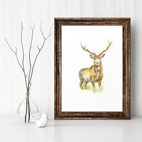 Unique Scottish artwork | Scottish stag print | Stag artwork by Morvenna