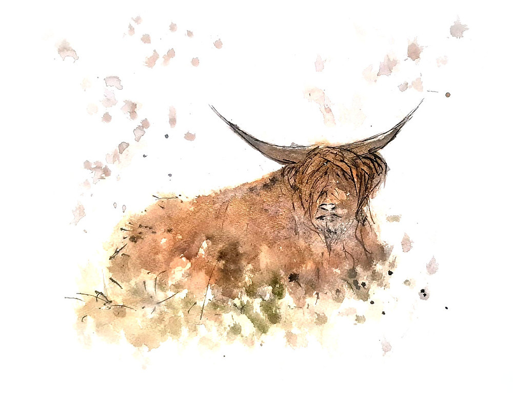 Highland Cow | Morvenna | Unique Scottish Artwork