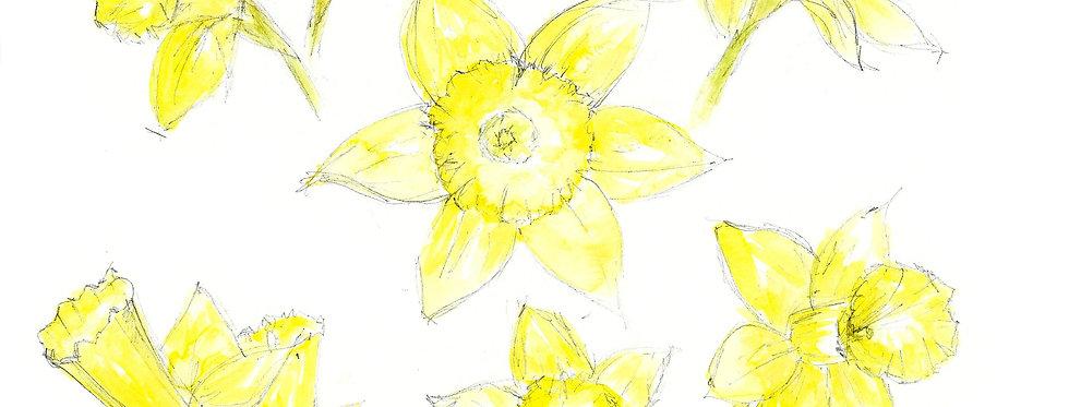 Daffodils Print