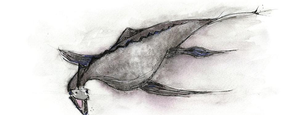 Nessie (Loch Ness Monster) card