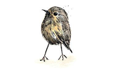 Wee Birdie | Wee Birdie Print | Wee Bird