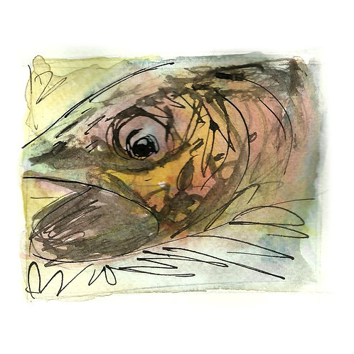 Trout C6 Greetings Card