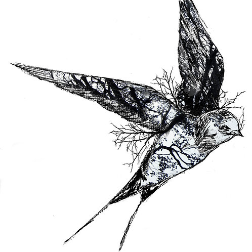The Swallow Print