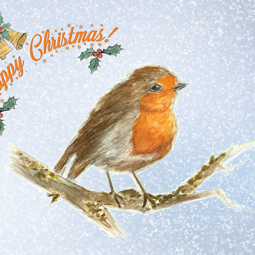Robin Christmas Card Front