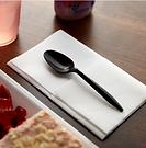 Plastic Black - Spoon.PNG