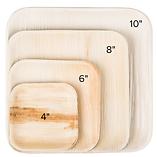 Palm Leaf Square Plates 01.PNG