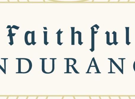Book Recommendation: Faithful Endurance: The Joy of Shepherding People for a Lifetime.