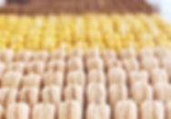 Amazing macarons at Bottega Louie