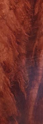 Flamed mahogany (detail)