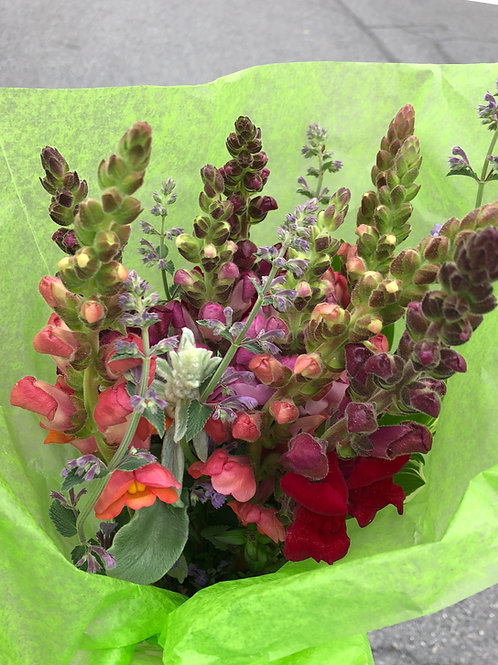Snapdragon and Catmint Bouquet ~ Megan Webber Flowers